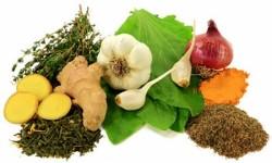 Doğal antibiyotik içeren besinler 2