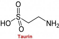 Taurin nedir, kullanım alanları riskleri ve etkileri 6