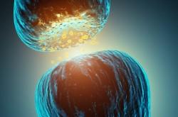 Serotonin sendromu belirtileri ve tedavisi 4