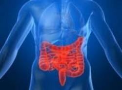 Bağırsak enfeksiyonu nedenleri, belirtileri ve tedavisi 7