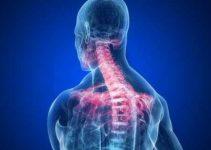 Boyun Düzleşmesi ve Sırt ağrıları Nedenleri 3