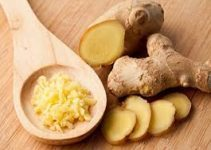 Kanser riskini azaltan, Kolesterolü düşüren bitki ZENCEFİL 2