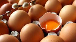 Yumurtanın Besin Değerleri ve Yumurtanın Faydaları 1