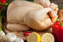 Tavuk Eti Zararlı mı? Tavuklarda Antibiyotik Kullanımı ve Etkileri 1